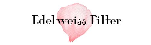 Setting up an Edelweiss Filter